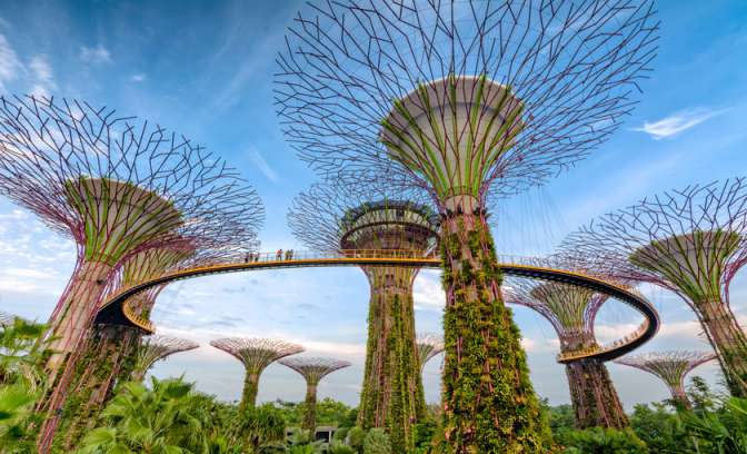 The gardens by the bay in Singapore